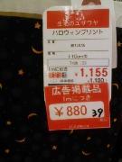 2007_0919_61_m_m.jpg